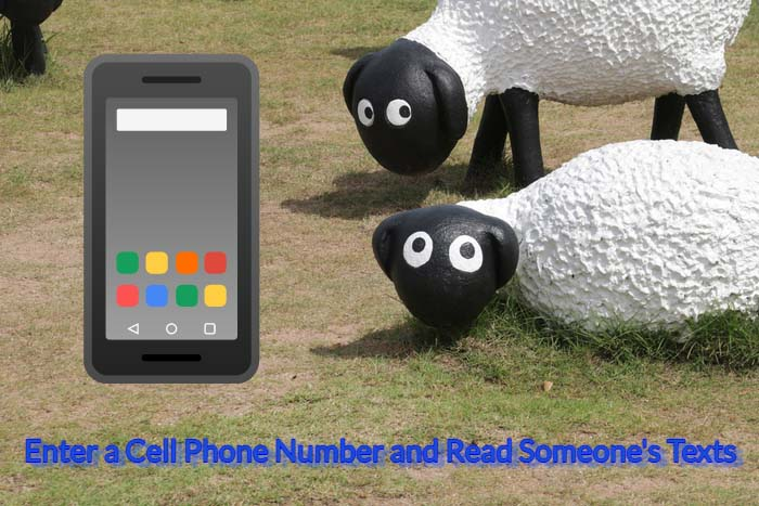 enter cell number read texts free without installing on target phone